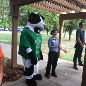 The Chik-Fil-A cow